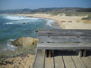 Ano Nuevo Beaches